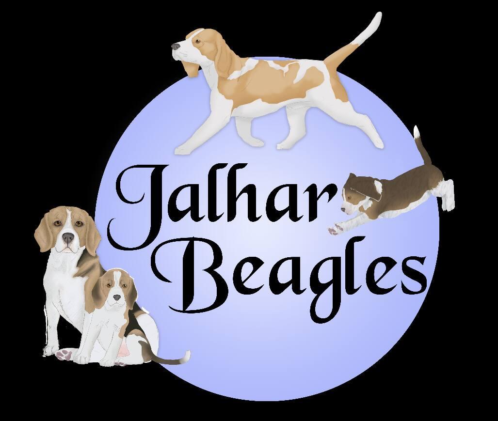 JALHAR BEAGLES